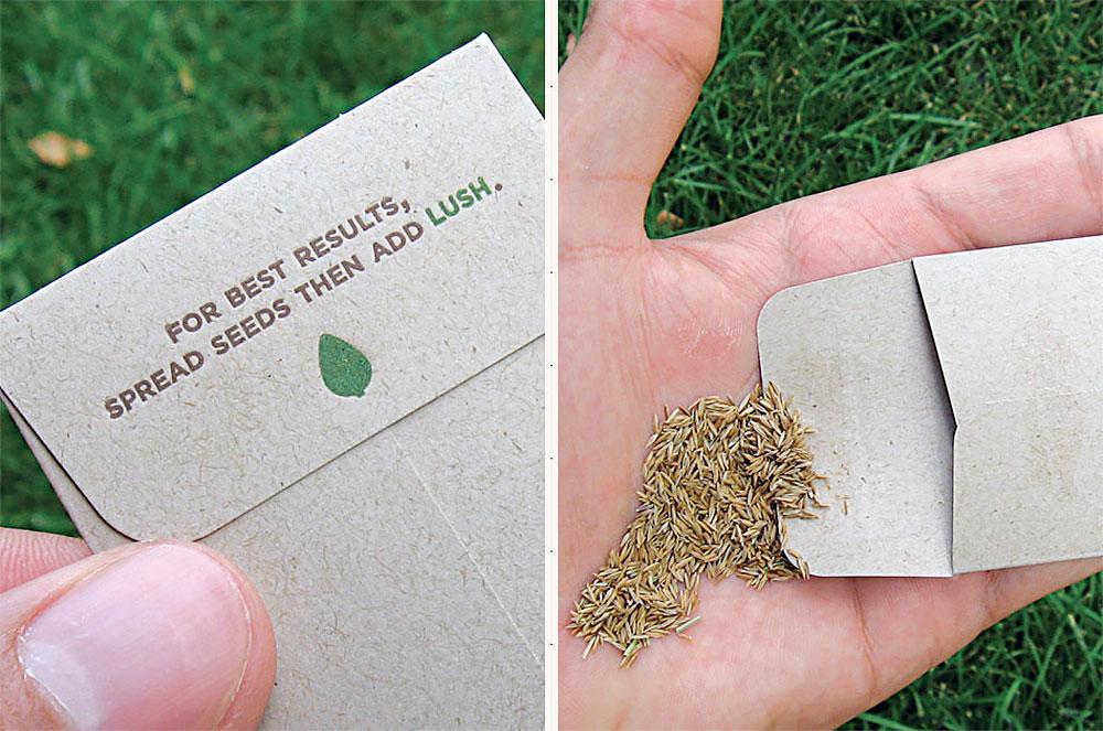 Seeds Business Card
